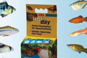 comida para peces en vacaciones
